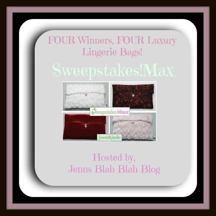 Sweepstakesmax Handbag Giveaway