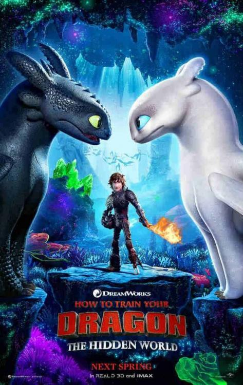 HOW TO TRAIN YOUR DRAGON: THE HIDDEN WORLD 8
