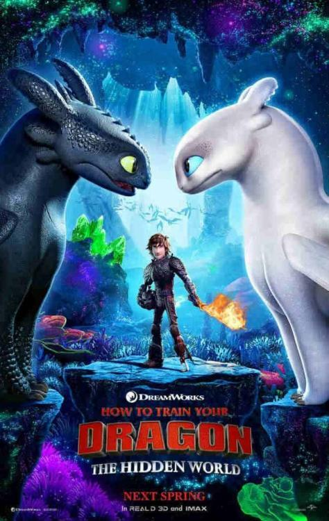 HOW TO TRAIN YOUR DRAGON: THE HIDDEN WORLD 3