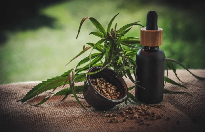 What Hemp Oil Can Do For Anxious Cats