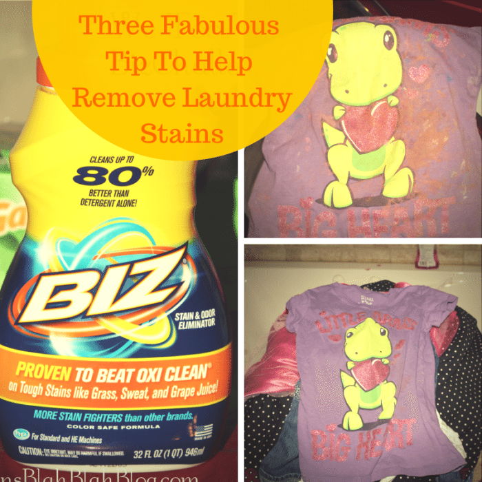 Three Fabulous Tip To Help Remove Laundry Stains
